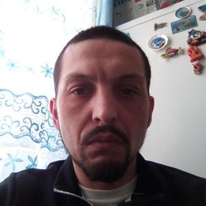 Ринат, 35 лет, Талдом
