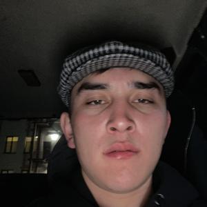 Борис, 26 лет, Электросталь