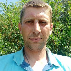 Сергей, 30 лет, Курск
