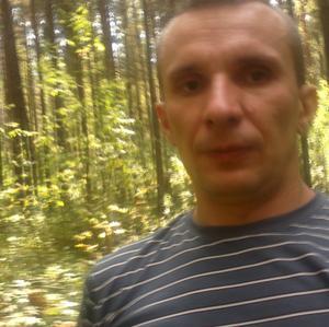 Evgeny, 39 лет, Тотьма
