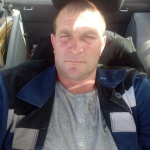 Александр, 39 лет, Нижний Новгород