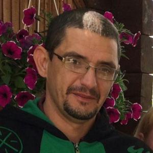 Дмитрий, 41 год, Батайск