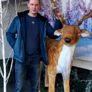 Александр, 26 лет, Кострома