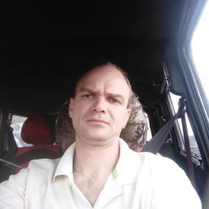 Сергей, 39 лет, Выборг