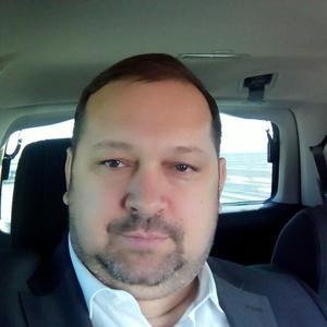 Владимир Стрилевский, 44 года, Камышин