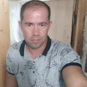 Николай, 40 лет, Кингисепп