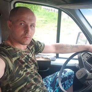 Павлик, 35 лет, Сосновоборск