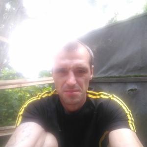 Александр, 37 лет, Выльгорт