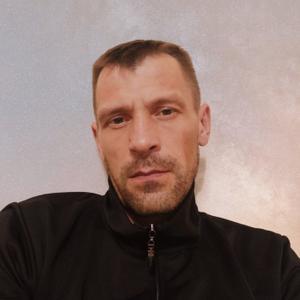 Kayo Dokri, 38 лет, Череповец