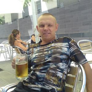 Алексей, 42 года, Пикалево