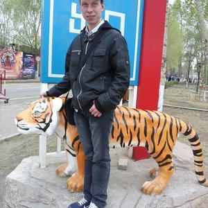 Николай, 35 лет, Зеленогорск