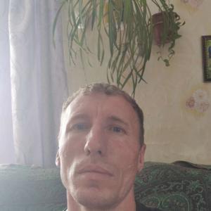 Сергей, 41 год, Чита
