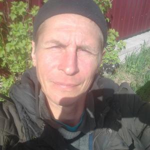 Николай, 39 лет, Плесецк