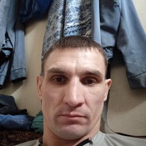 Андрей, 37 лет, Богородск