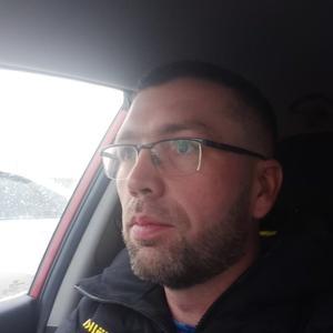 Александр, 39 лет, Тула