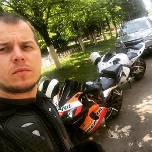 Денис, 32 года, Краснознаменск