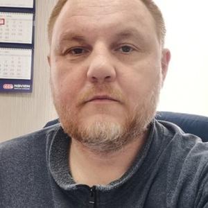 Денис, 41 год, Новосибирск