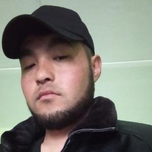 Asadov Zarifjon, 30 лет, Мурманск
