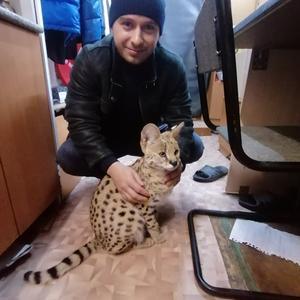 Роман, 29 лет, Красноармейск