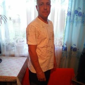 Алексей, 39 лет, Свободный