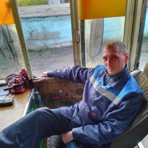 Станислав, 36 лет, Белово