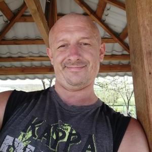 Григорий, 42 года, Мурманск