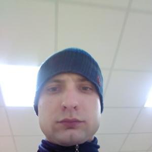 Илья, 28 лет, Пересвет