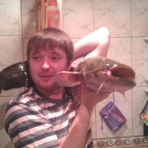 Сергей Ерохин, 37 лет, Железногорск