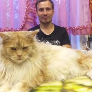 Виталий, 36 лет, Беломорск
