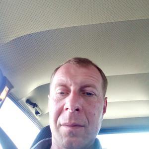 Сергей, 40 лет, Россошь