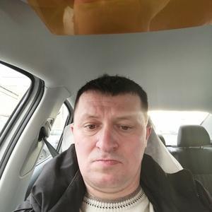 Александр, 40 лет, Кострома
