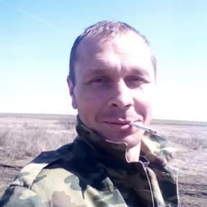 Антон, 36 лет, Донецк