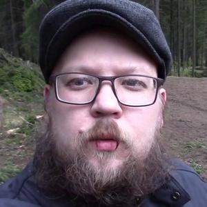 Михаил Гитаркин, 35 лет, Петрозаводск