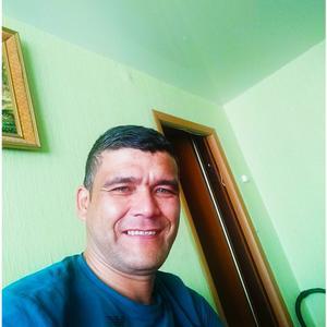 Muhammad, 44 года, Череповец