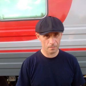 Сергей, 42 года, Волхов