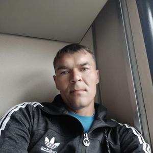 Владимир, 37 лет, Чита