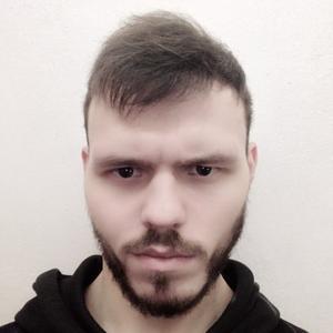 Андрей, 26 лет, Протвино