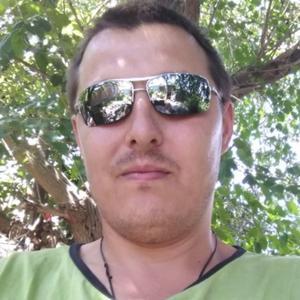 Александр, 31 год, Ростовская