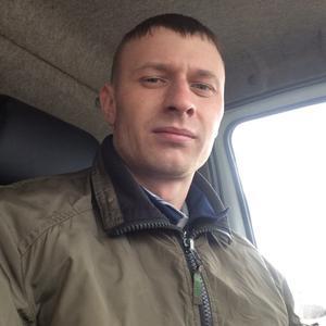 Максим, 30 лет, Вельск