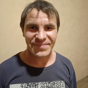 Альберт, 44 года, Чистополь