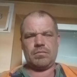 Александр, 45 лет, Одинцово