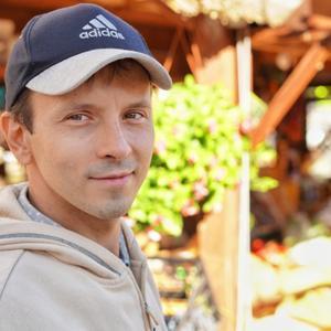 Sasha Lev, 32 года, Краснодар