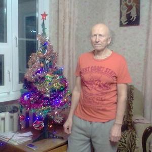 Александр, 73 года, Иваново