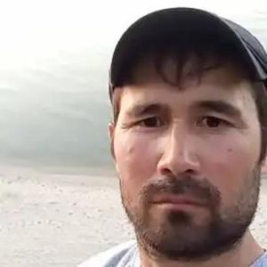 Samar, 34 года, Калининград