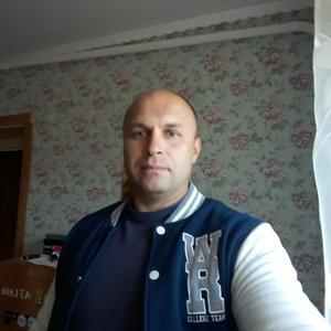 Роман, 44 года, Серпухов