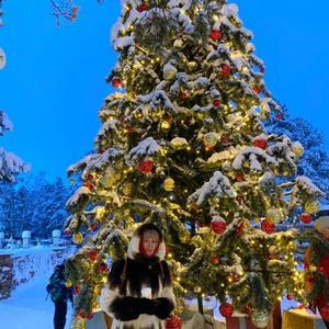 Катерина, 42 года, Сыктывкар