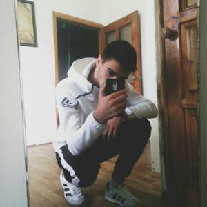 Дмитрий Соколов, 21 год, Краснодар