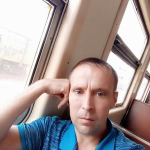 Владимир Никулин, 36 лет, Междуреченск