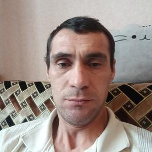 Василий, 43 года, Зарайск