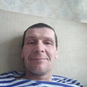 Денис Варламов, 41 год, Сосновка